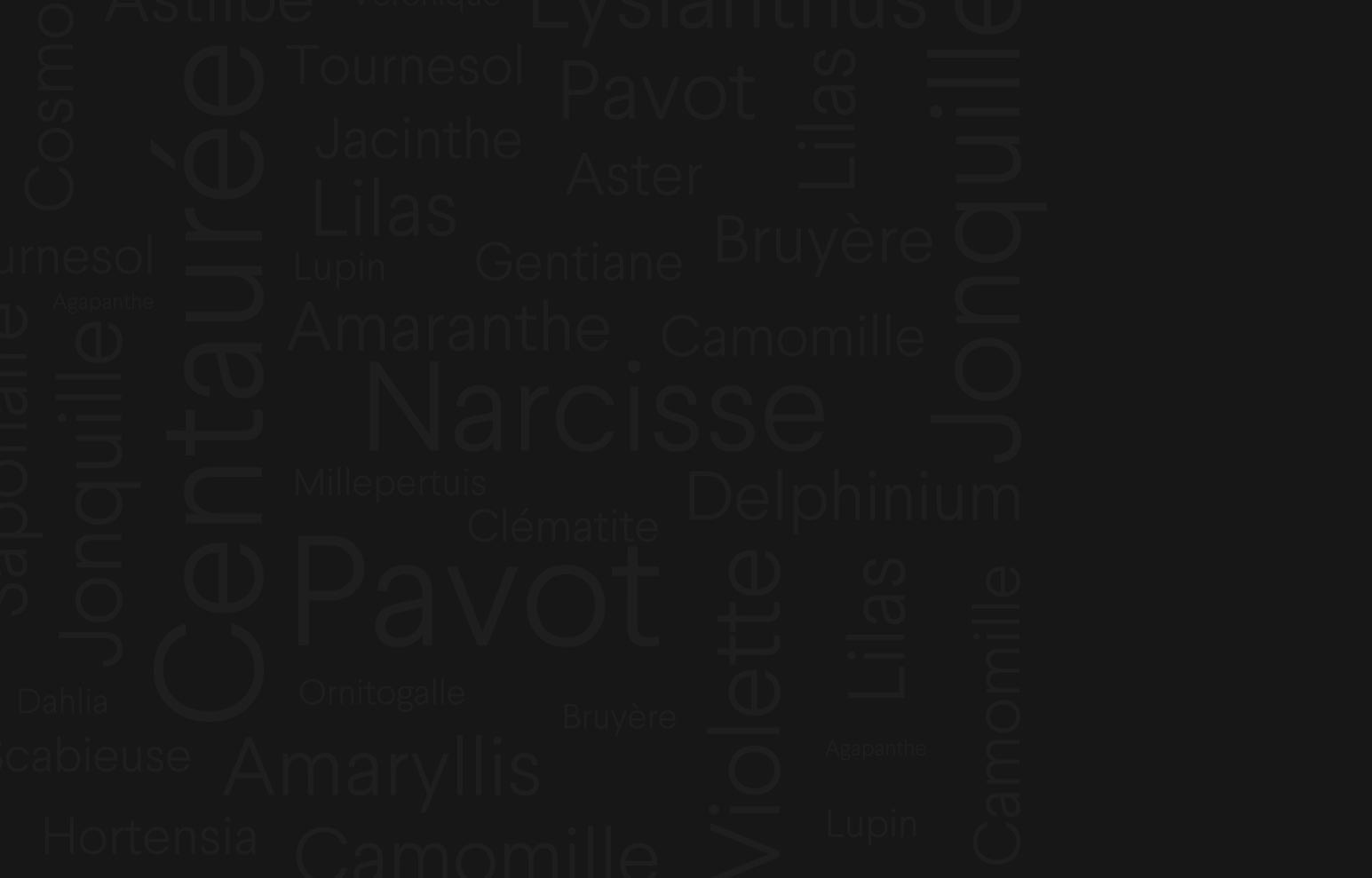 Background Header Rouge Pivoine
